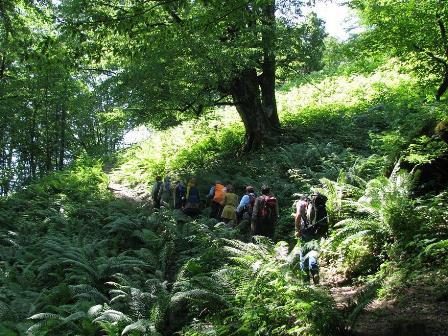 Gishar-Kuh Peak Climbing